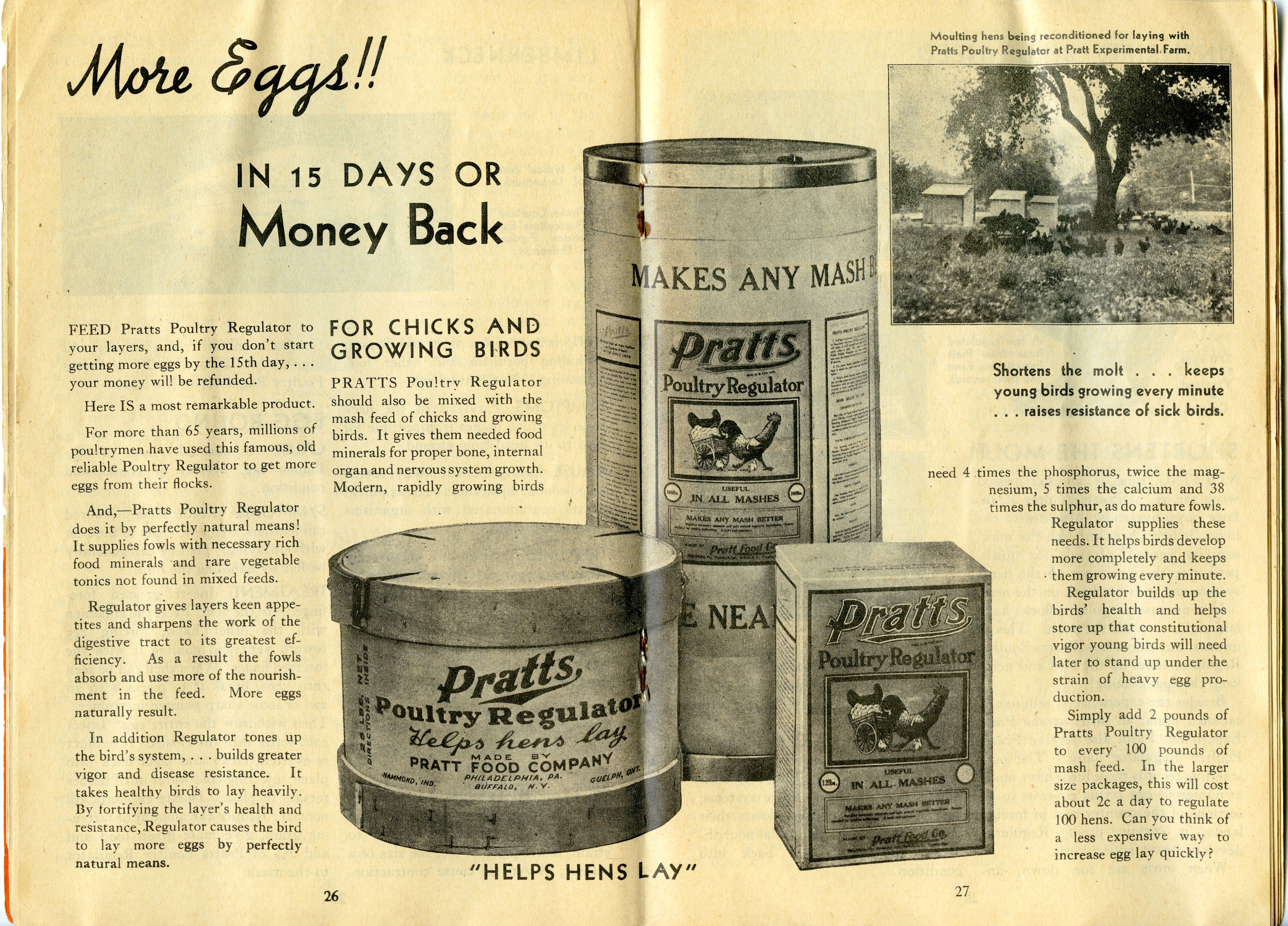 Pratts Health Guide More Eggs pages