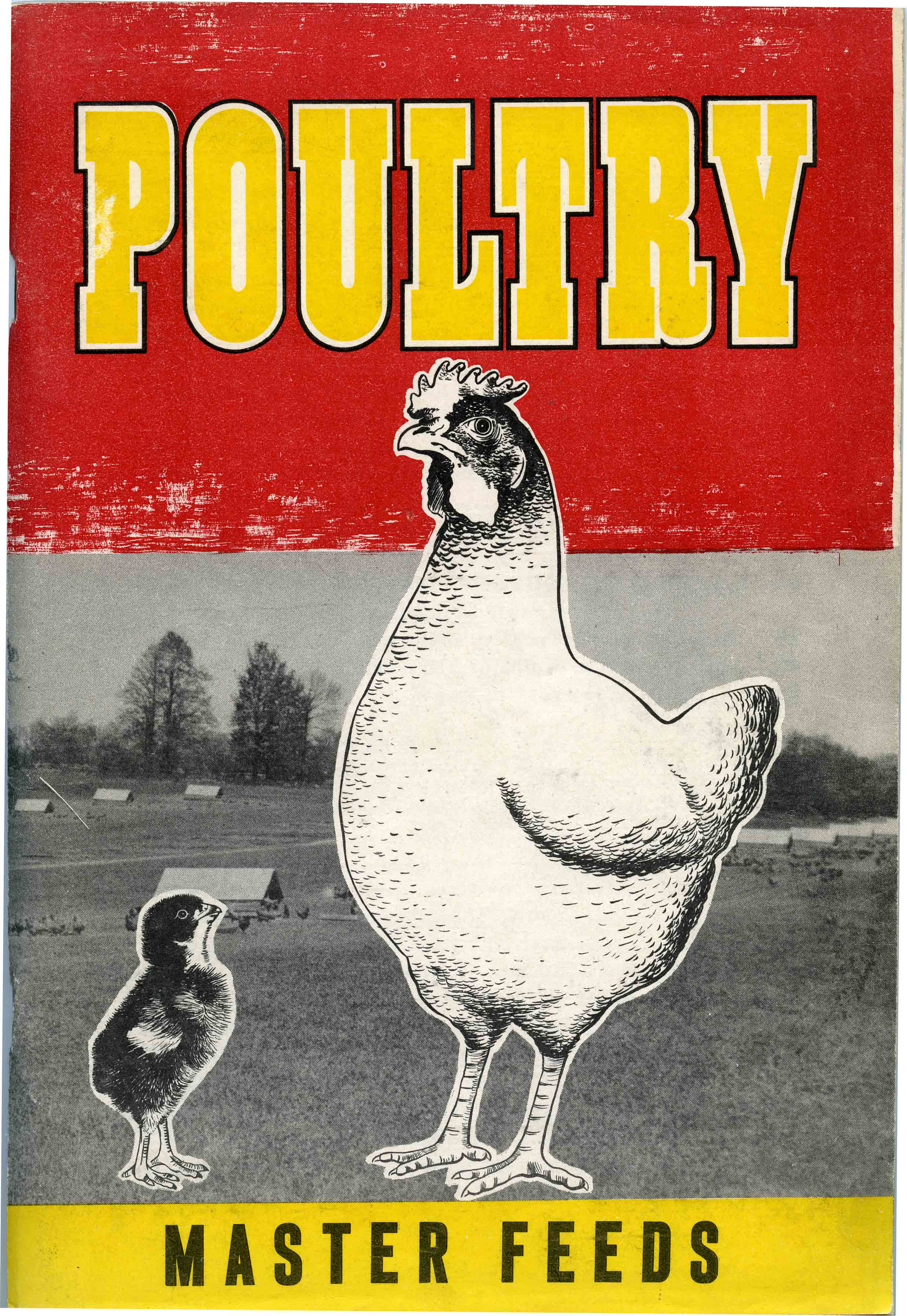 Poultry by Master Feeds
