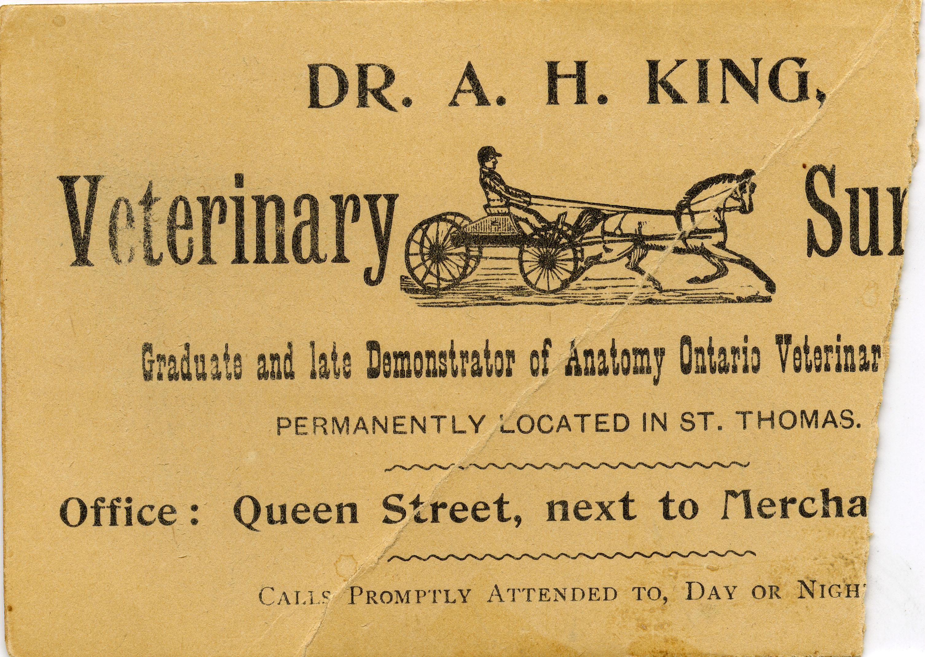 A.H. King V.S. Business Card